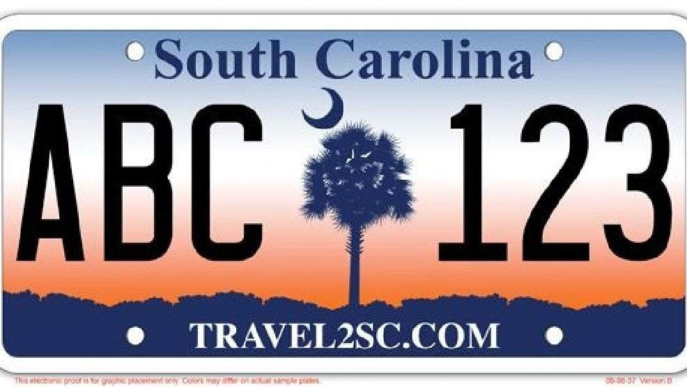SC to do away with sunrise and Palmetto tree license plate | WACH