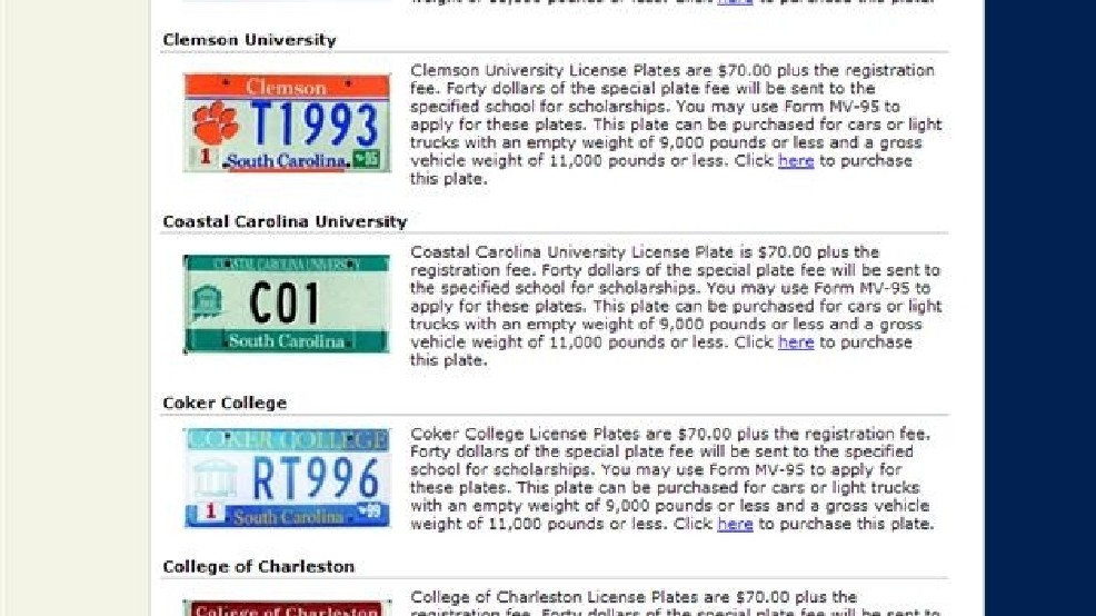 SC DMV sets up online service to replace plates | WACH